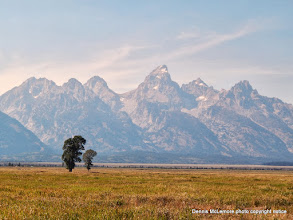 Photo: Tetons at Mormon Row