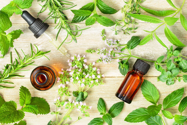 Essential oils are typically extracted from plants using a variety of methods, like steam-distillation or cold pressing.