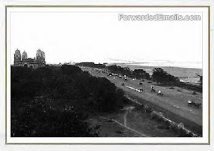 Photo: Beach road - Napier bridge
