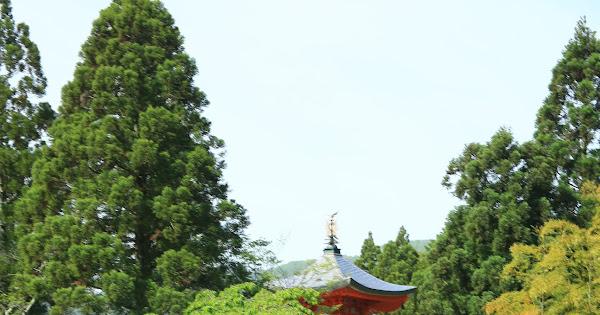 59. Shoubou-ji (100 Japanese Garden in Kyoto I recommend)