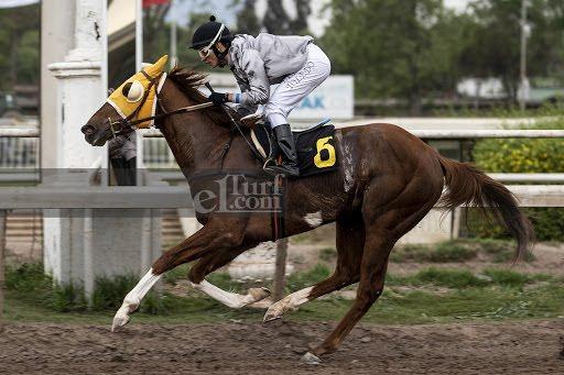 Decide Tu (Don Cavallo) gana Handicap (1000m-Arena-CHS).