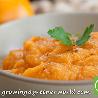 Ginger Maple Sweet Potato Puree Recipe