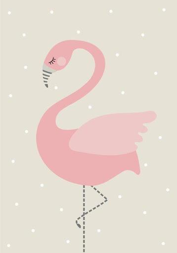 Flamingo Wallpapers Hd Apk App تنزيل مجاني لأجهزة Android