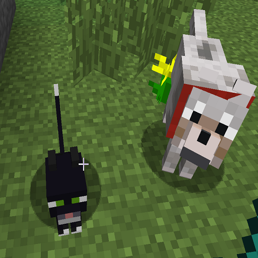 Pets Ideas Minecraft