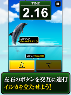 Can Dolphin Stand?- screenshot thumbnail