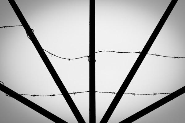 Il filo spinato di Bellaventu