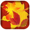 Fall Leaf Live Wallpaper icon