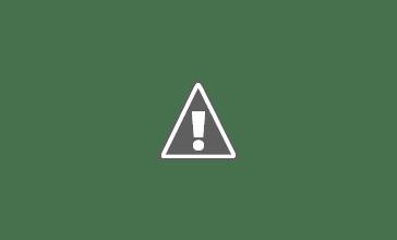 Photo: Purple Swamphen