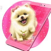 Tải Cute Fluffy Puppy Live Wallpaper APK