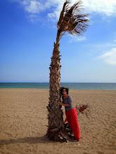 Photo: Hug a tree