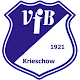 Download VfB Krieschow For PC Windows and Mac