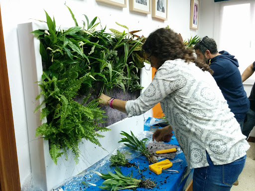 Curso en madrid de jardines verticales y cubiertas for Jardines verticales espana
