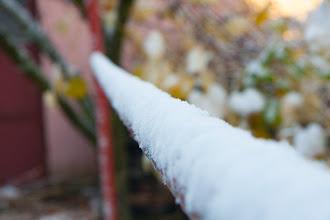 Photo: Cienka warstwa płatków śniegu pokryła wszystko dokoła