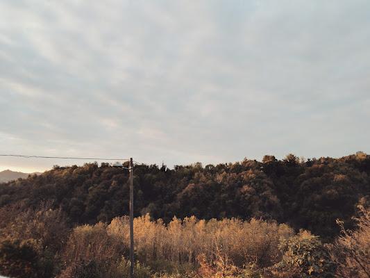 I colori dell'alba di giulia_juls