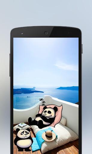有趣的熊貓