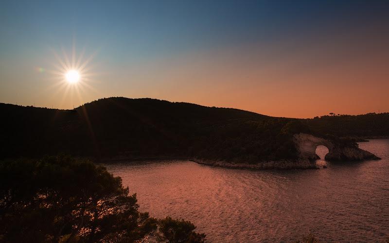 L'amor che move il sole e l'altre stelle  (Dante Alighieri ) di marco la torre