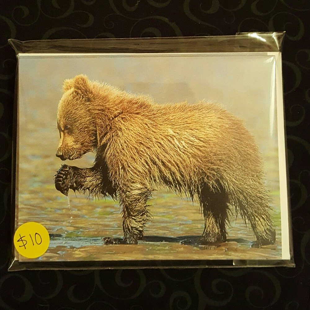 Little Clamming Bear