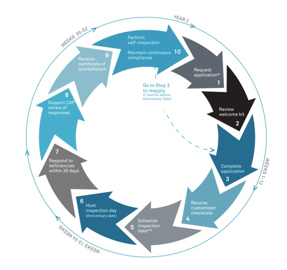 The various steps involved in the cycle of CAP accreditation.