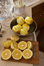 Photo: ready for juicing to make lemon ice cubes (the rinds are for lemoncello)