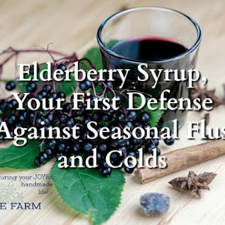 Elderberry Syrup, Your First Defense Against Seasonal Flus and Colds.