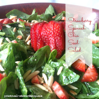 Strawberry Spinach Chia Seed Salad, G-F, D-F.