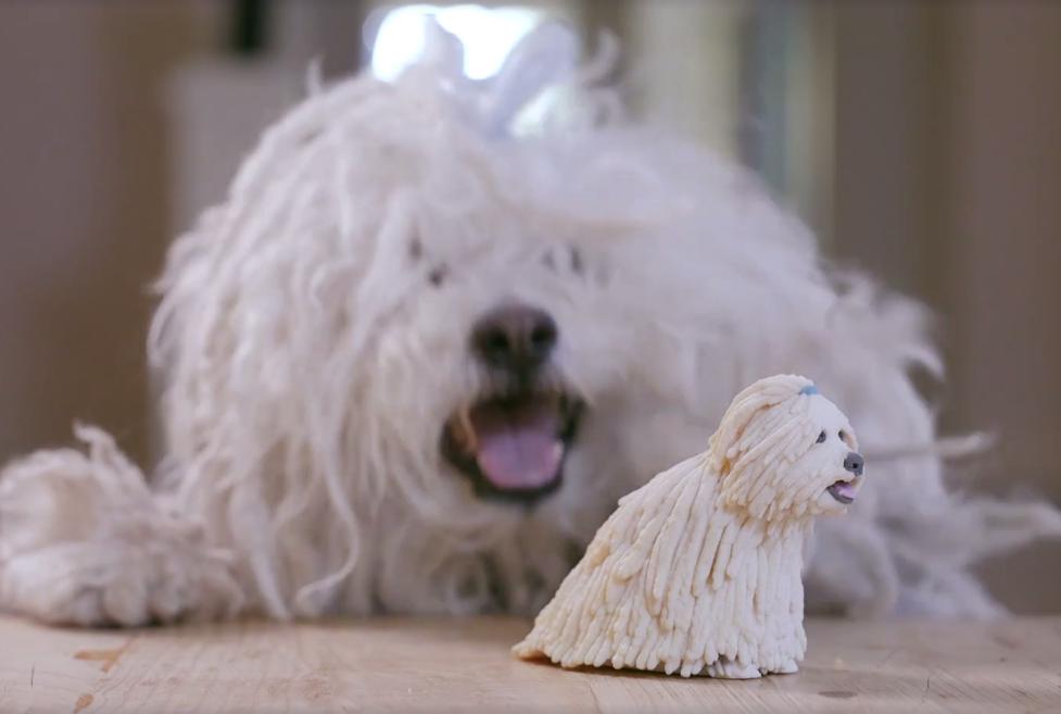 Марк Цукерберг напечатал 3D подарок для своей собаки