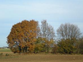 Photo: autumn 5.9.11