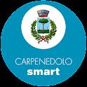 Carpenedolo Smart icon