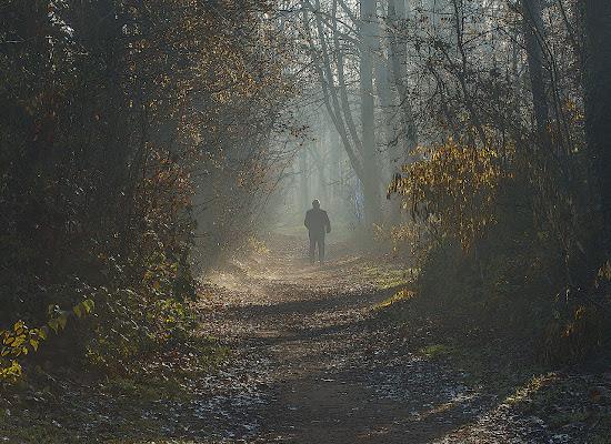 ascoltando il silenzio del bosco di angelo27