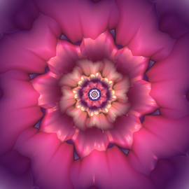 Flower 33 by Cassy 67 - Illustration Abstract & Patterns ( purple, abstract art, digital art, harmony, bloom, fractal, digital, fractals, energy, flower )
