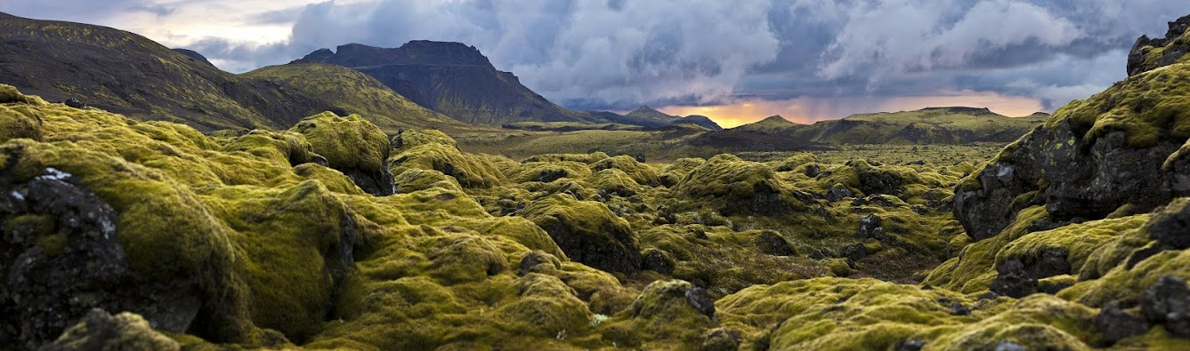 Icelandic mountains covered in woolly moss