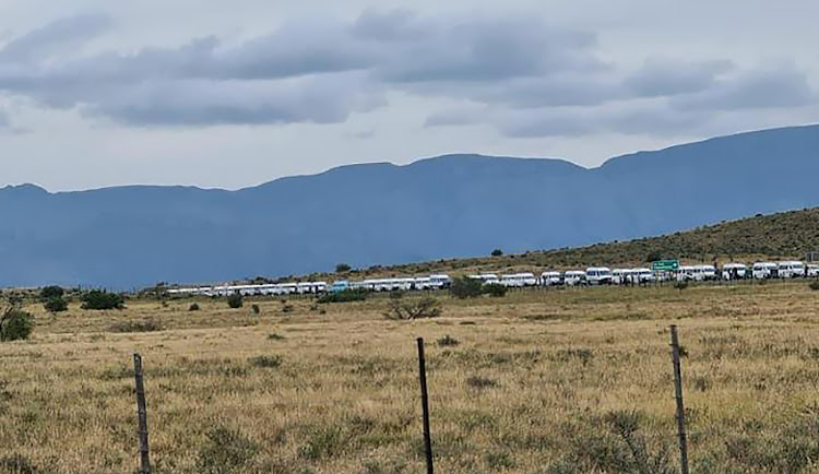 Minibus taxis standing bumper to bumper at a roadblock while attempting to travel to the Eastern Cape during lockdown.