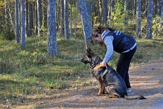 Photo: Tanja og Ulvehiets Barske Kahn gjør seg klare til å gå spor.