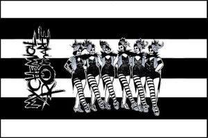 My Chemical Romance - Flagga