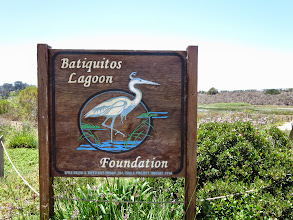 Photo: Going for a hike in the lagoon outside the house