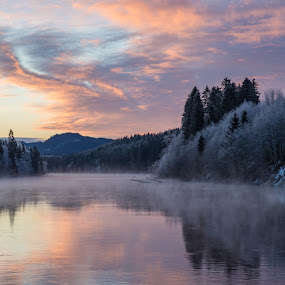 Frost by Grete Øiamo - Landscapes Waterscapes ( water, winter, frost, trees, pink )