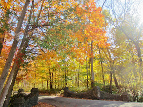 Photo: Stone walls under gorgeous autumn leaves at Hills and Dales Metropark in Dayton, Ohio.