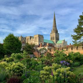 Bishop's garden by Bela Paszti - City,  Street & Park  City Parks ( england, u.k., chichester, cathedral, iphone, garden,  )