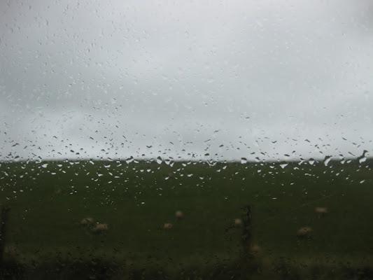 November Rain di marcolamonaca