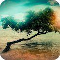 Magical Trees Live Wallpaper icon