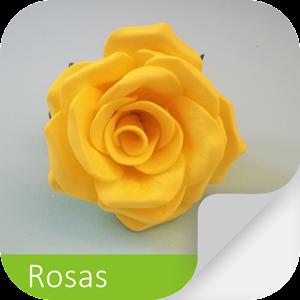 Cultivo das Rosas