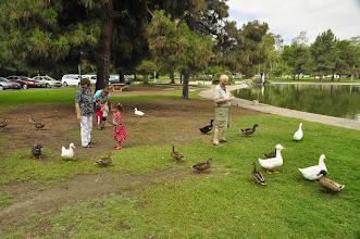 Photo: feeding the ducks and geese