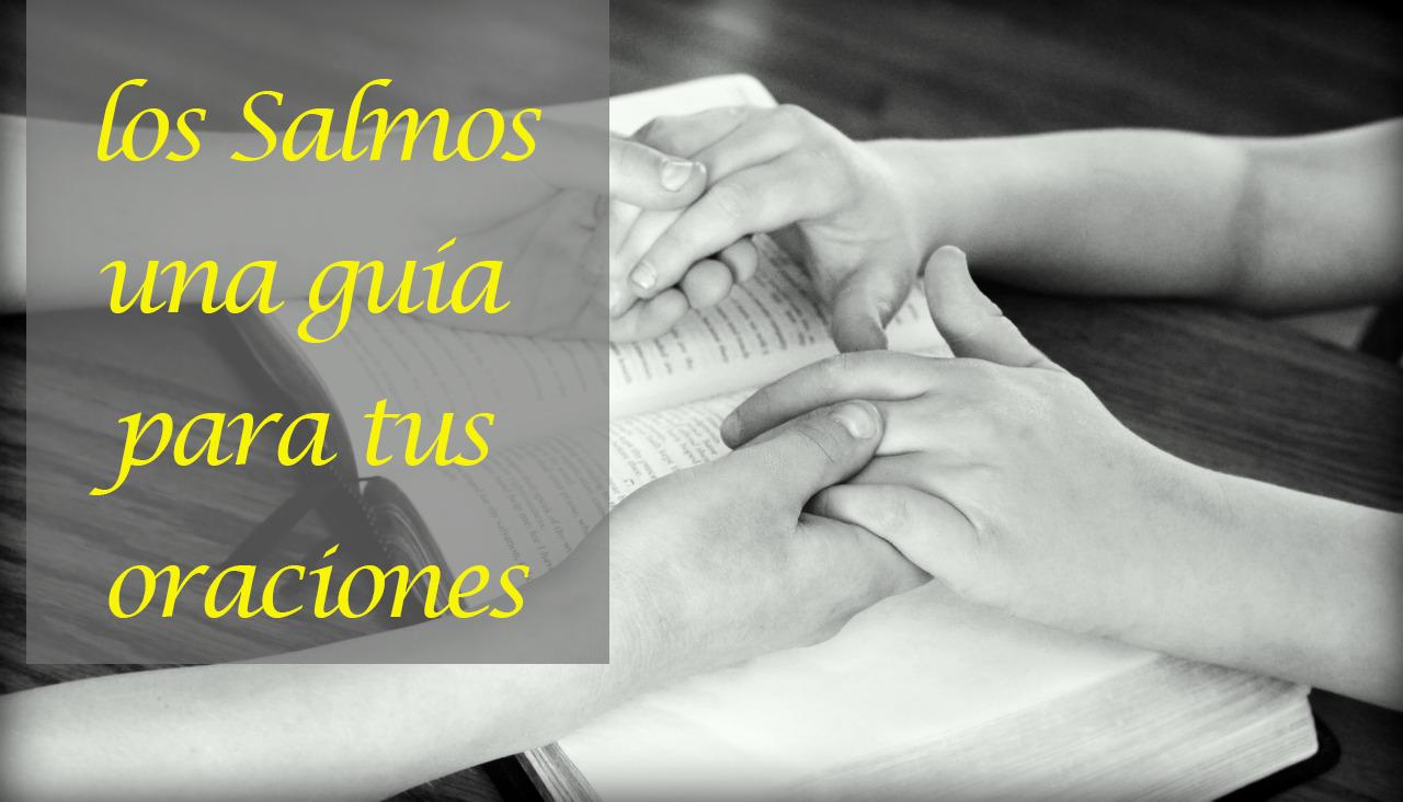 Salmos Catolicos Del Dia En Español Android приложения