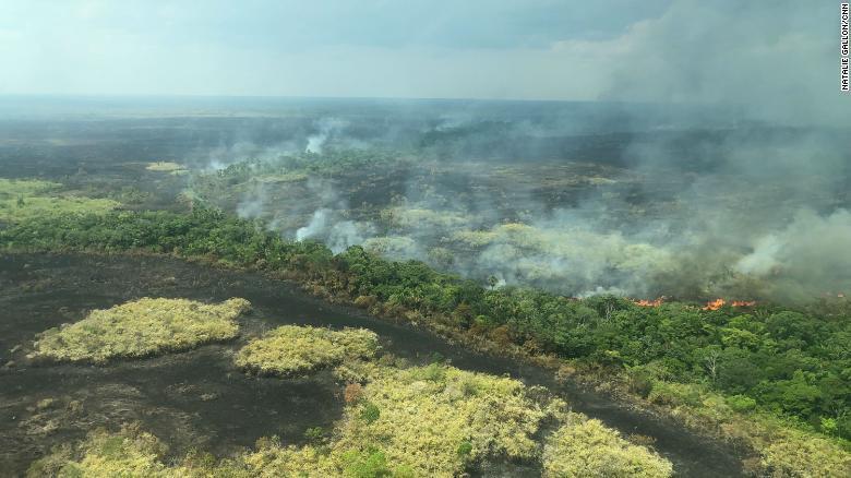 Kết quả hình ảnh cho cháy rừng ở amazon