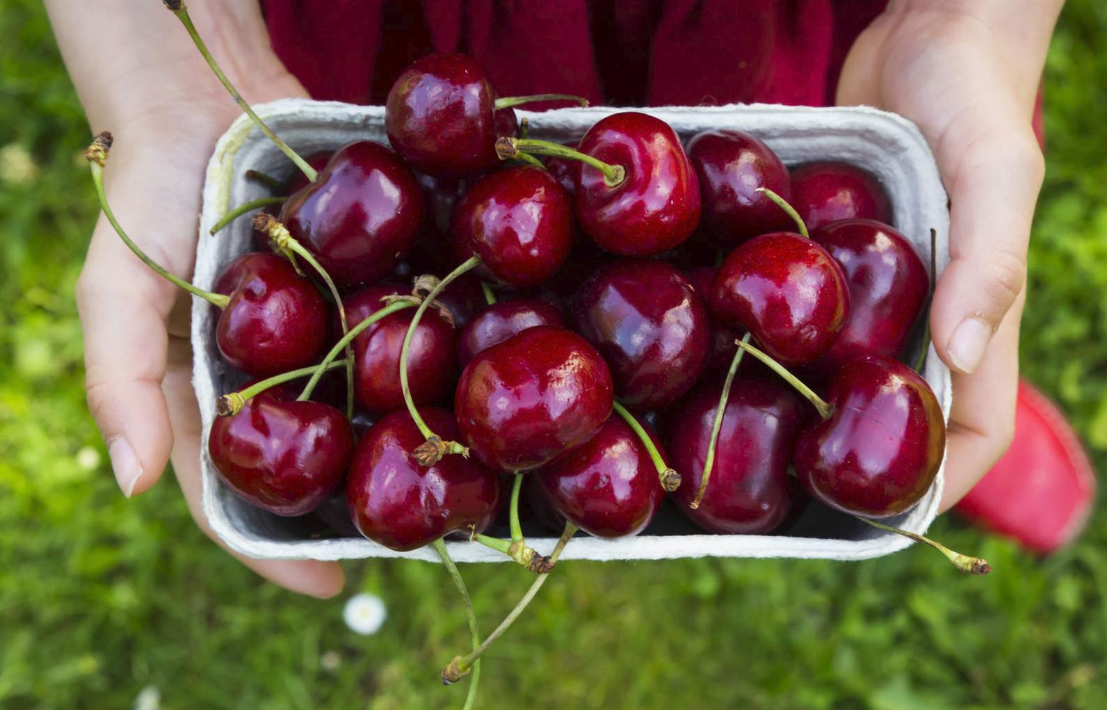 Bật mí các tác dụng tuyệt vời của cherry nhập khẩu