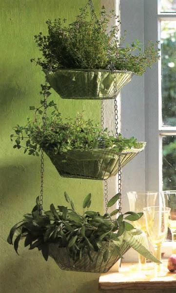 Photo: Cestos de hierbas. Los cocineros quieren tener siempre a mano un amplio surtido de hierbas. Estas tres cestas colgadas proporcionan, además, un bello conjunto decorativo.