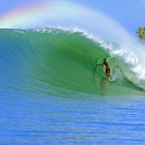 Rainbow Barrel by Paul Kennedy - Sports & Fitness Surfing ( tube ride, surfing, surfer, wave, perfect, large )