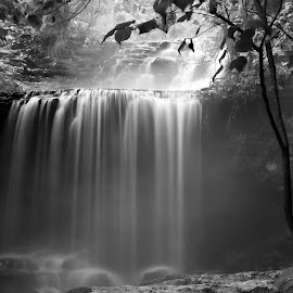 DREAMSCAPE by Dana Johnson - Black & White Landscapes ( waterfalls, black and white, cascade, falls, landscape, moonlight )