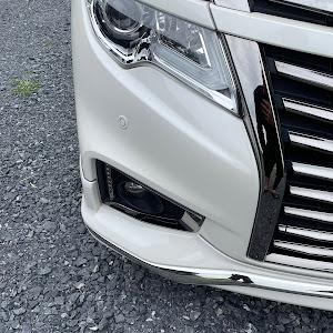 エルグランド TNE52 2019年250 highway STAR premium urban Chromのカスタム事例画像 tatsuya0044さんの2021年09月28日09:28の投稿
