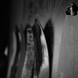 Snowboards by Grant Tomsic - Sports & Fitness Snow Sports